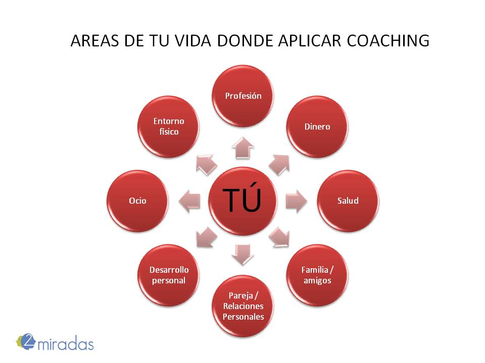 areas coaching