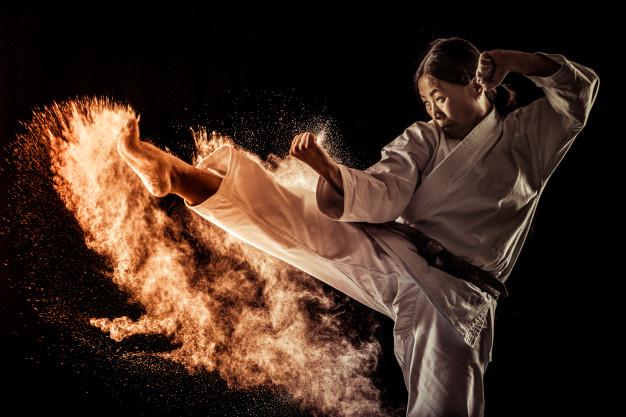 la disciplina del karate aplicada al mundo empresarial